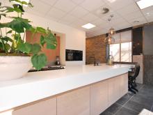 keukenhof-van-holten-twente-moderne-greeploze-woonkeuken-leefkeuken-corian-1.JPG